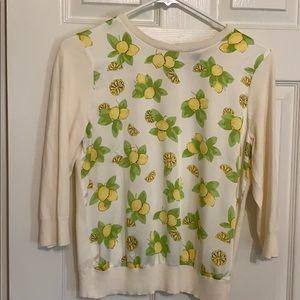 Ann Taylor MP sweater